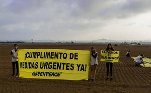 Greenpeace saca pancartas en Cartagena para exigir la protección del Mar Menor