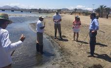 Las brigadas de limpieza del Mar Menor retiran en 6 meses el doble de residuos de algas que en 2017