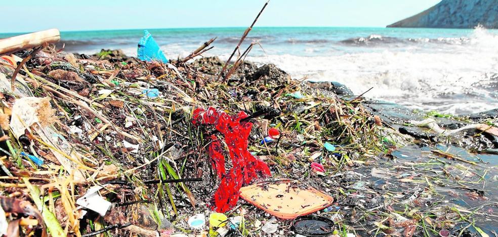 Ahogados por la basura marina