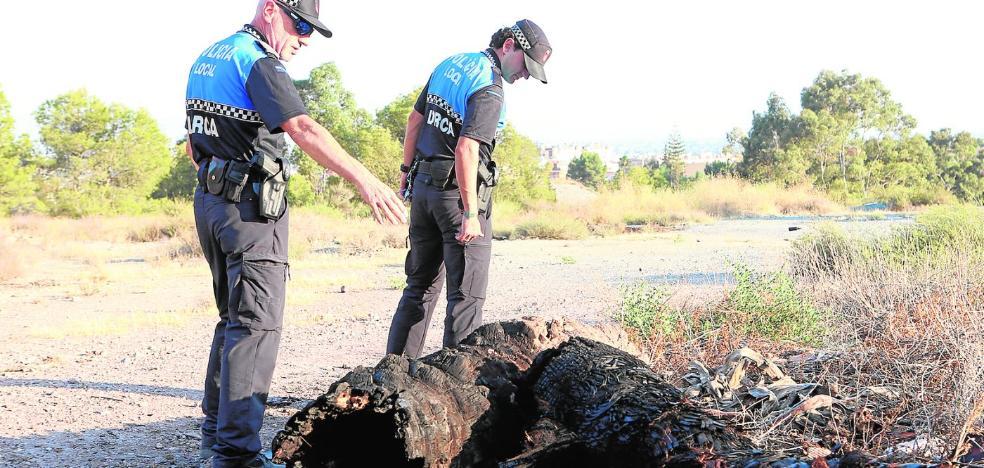 El blindaje policial del entorno del castillo deja al pirómano sin poder actuar