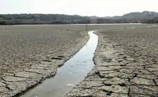 La cuenca del Segura se enfrenta a una de las sequías más largas de los últimos años