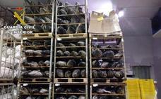 La Guadia Civil incauta 45 toneladas de atún congelado que se vendía como fresco