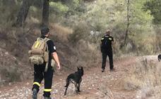 Desactivan el dispositivo de búsqueda del desaparecido en Casas Nuevas