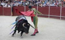 Los novilleros José Manuel y Juan Carlos Benitez, cogidos de gravedad en Blanca