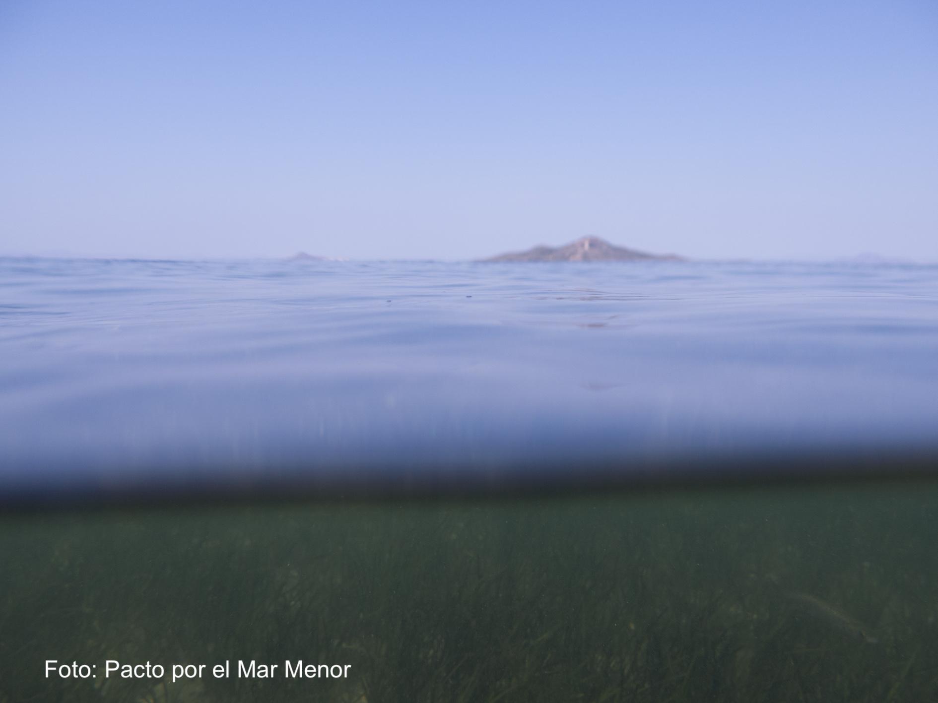 Pacto por el Mar Menor asegura que más transparencia no es igual a la recuperación de la laguna