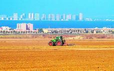 Los agricultores reducen la presión sobre el Mar Menor con solo una cosecha al año