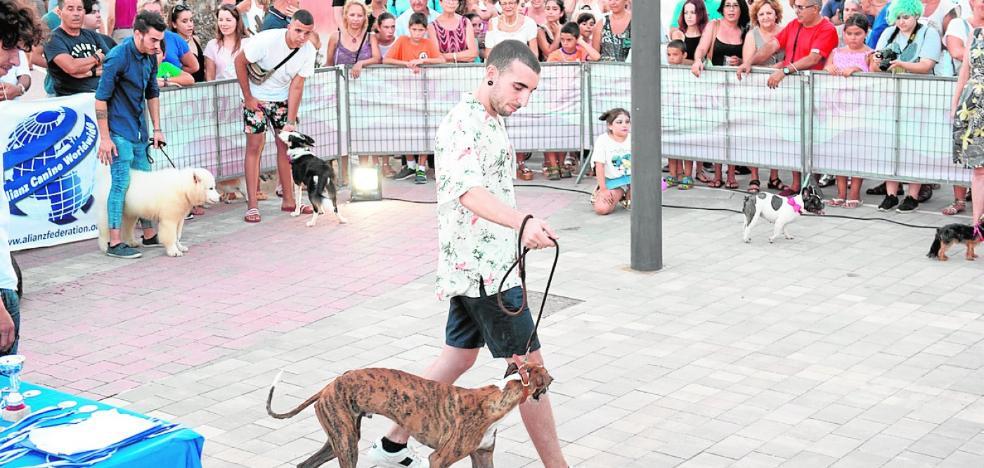 El Rihuete se convierte en un gran festival de mascotas