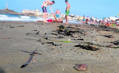 Más de un centenar de bañistas atendidos en La Manga y Cabo de Palos por picaduras de medusa