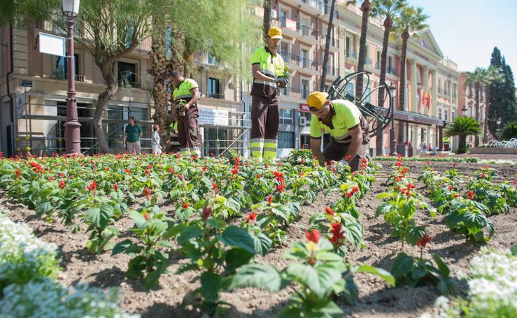 70.000 flores en Murcia para la Feria de Septiembre