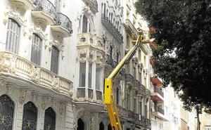 Revisan los ficus de la Plaza San Francisco para evitar la caída de ramas tras meses de sequía
