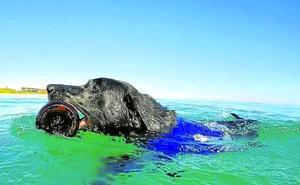 'Lila' limpia los mares