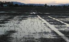 La 'gota fría' descarga en la Región de Murcia