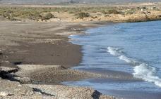 Ecologistas crean una brigada de emergencia para limpiar Marina de Cope