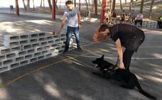 La Policía Local de Molina de Segura se forma en la detección de drogas con perros adiestrados