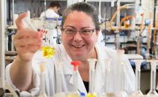 Se busca 'padrino' para prometedor proyecto de investigación
