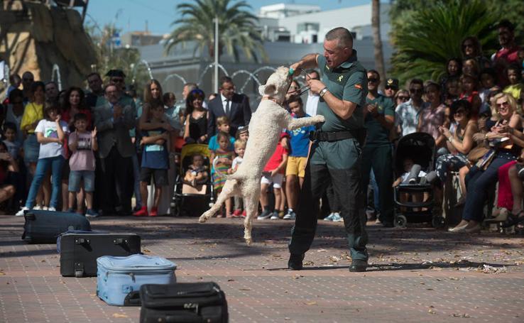 La Guardia Civil se exhibe en Murcia para conmemorar a su Patrona