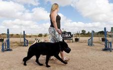 La Comunidad renueva el convenio para ofrecer a víctimas de malos tratos terapia con perros