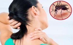Síntomas del dengue: una fiebre 'quebrantahuesos' que se confunde con una gripe