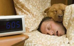 Dormir más horas de la cuenta es tan malo como no descansar las necesarias