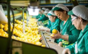 La confianza empresarial decae tres puntos en el último trimestre
