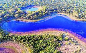 La Fundación BBVA premia la conservación de la dehesa ibérica y del bosque subtropical