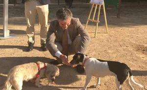 La Región protegerá a los animales de compañía con una nueva ley
