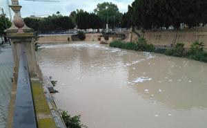Huermur denuncia la aparición de espuma en el Segura tras las lluvias de la 'gota fría'