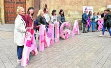 El SMS incorporará el próximo año siete mamógrafos de la Fundación Ortega
