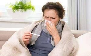 Los alimentos que evitarán que pilles la gripe este año