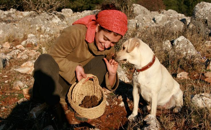 Las variedades de hongos que encontramos en la Región de Murcia