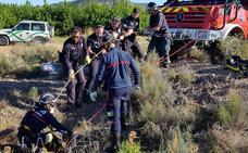 Rescatan un galgo que cayó a un pozo