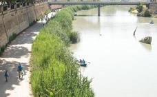 Detectan pérdidas de 10 litros de lluvia y nieve por metro cuadrado en el río Segura
