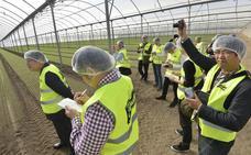 Agricultores nipones visitan las instalaciones de Florette en Torre Pacheco