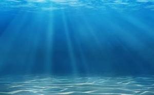 Alertan del preocupante cambio de color que está ocurriendo en el fondo del mar