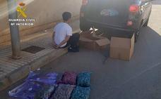 Desmantelan un invernadero de marihuana en un dúplex de Cabo de Palos