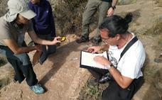 Descubren en Santomera un campo de petroglifos oculto durante 5.000 años