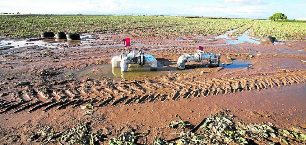 La CHS limpiará ramblas y hará nuevos drenajes para evitar más inundaciones