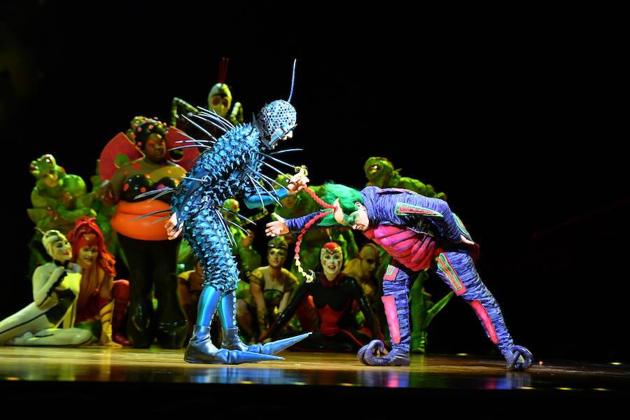 Así es 'Ovo', el espectáculo del Circo del Sol.