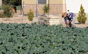 La CHS fija el canon de regulación de aprovechamientos con agua de regadío en Lorca