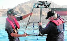 Un estudio destaca que la calidad del agua portuaria es «muy buena»