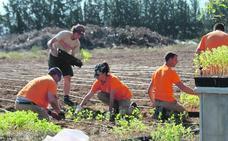 La Región ensaya la agricultura para enfriar el planeta