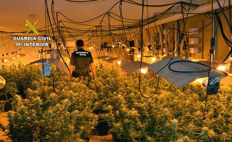 La Guardia Civil desmantela una organización criminal dedicada a cometer robos con violencia y 'vuelco' de drogas