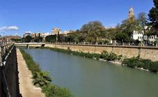 La adecuación de los márgenes del río Segura avanzan un paso más para su adjudicación