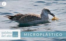 Microplástico (hay que decirlo más)