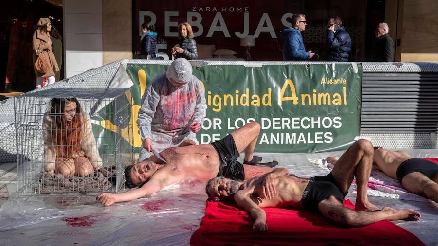 Animalistas protestan contra la venta de pieles simulando su muerte en Murcia