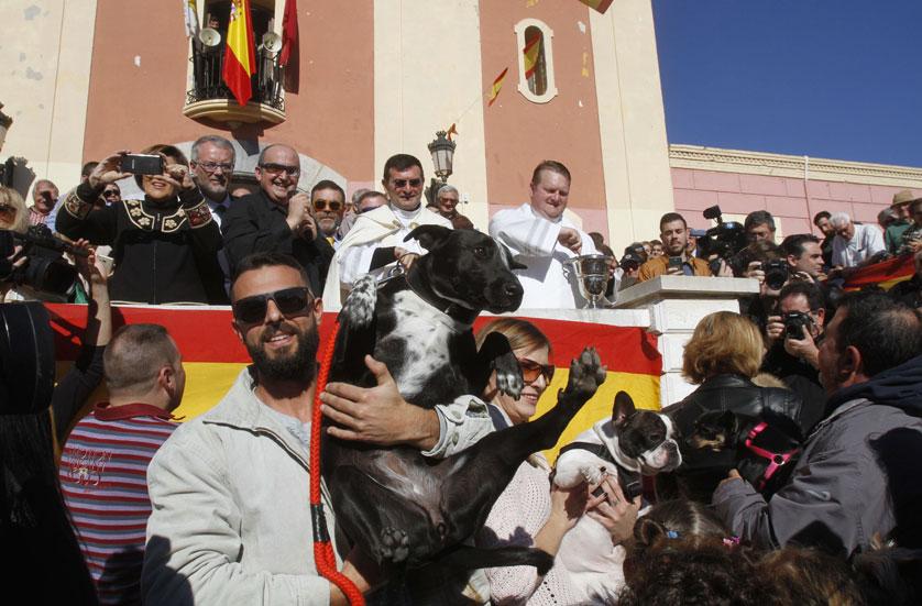 San Antón bendice a los suyos