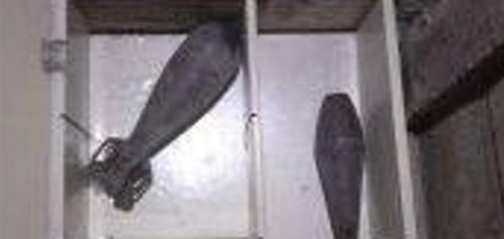 Desactivan dos granadas de mortero de la Guerra Civil halladas en una vivienda de Valladolid