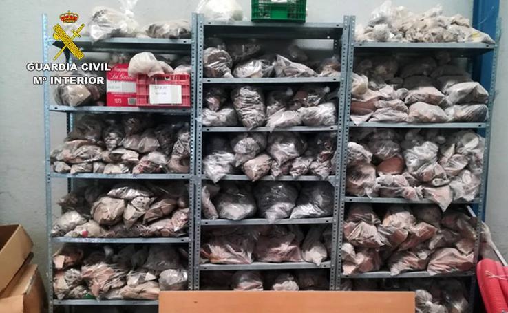 Hallan 80.000 piezas arqueológicas almacenadas en una nave industrial de Lorca