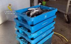 Sorprenden a dos pescadores furtivos en Portmán con más de un centenar de capturas