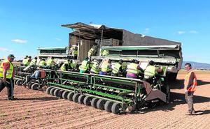 Una máquina que planta más de un millón de semillas al día